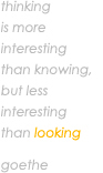 Thinking is more interesting than knowing, but less interesting than looking